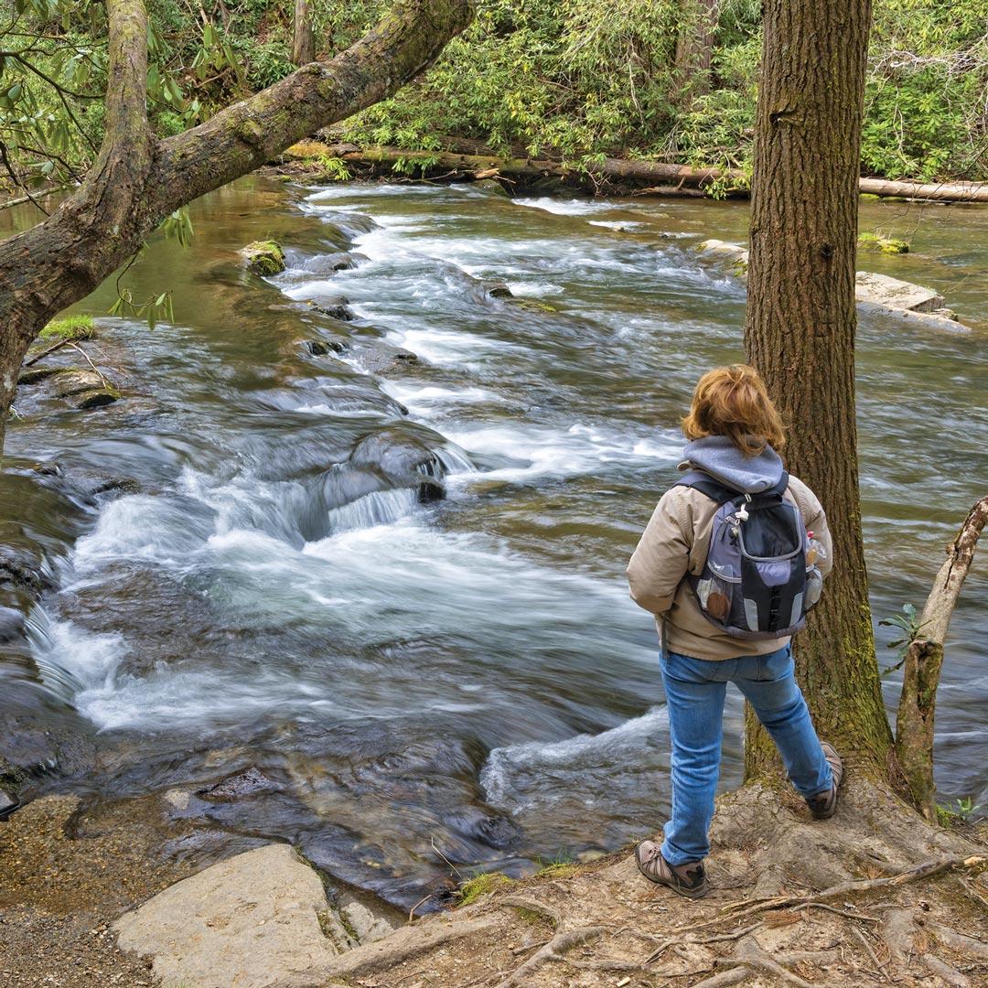 a hiker stands near Abrams Creek