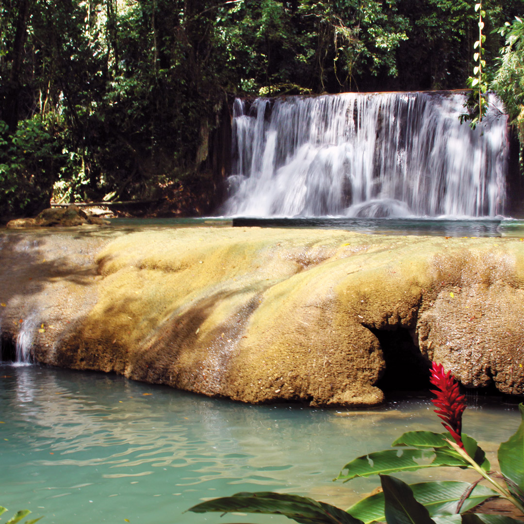 secluded swimming hole at ys falls in Jamaica