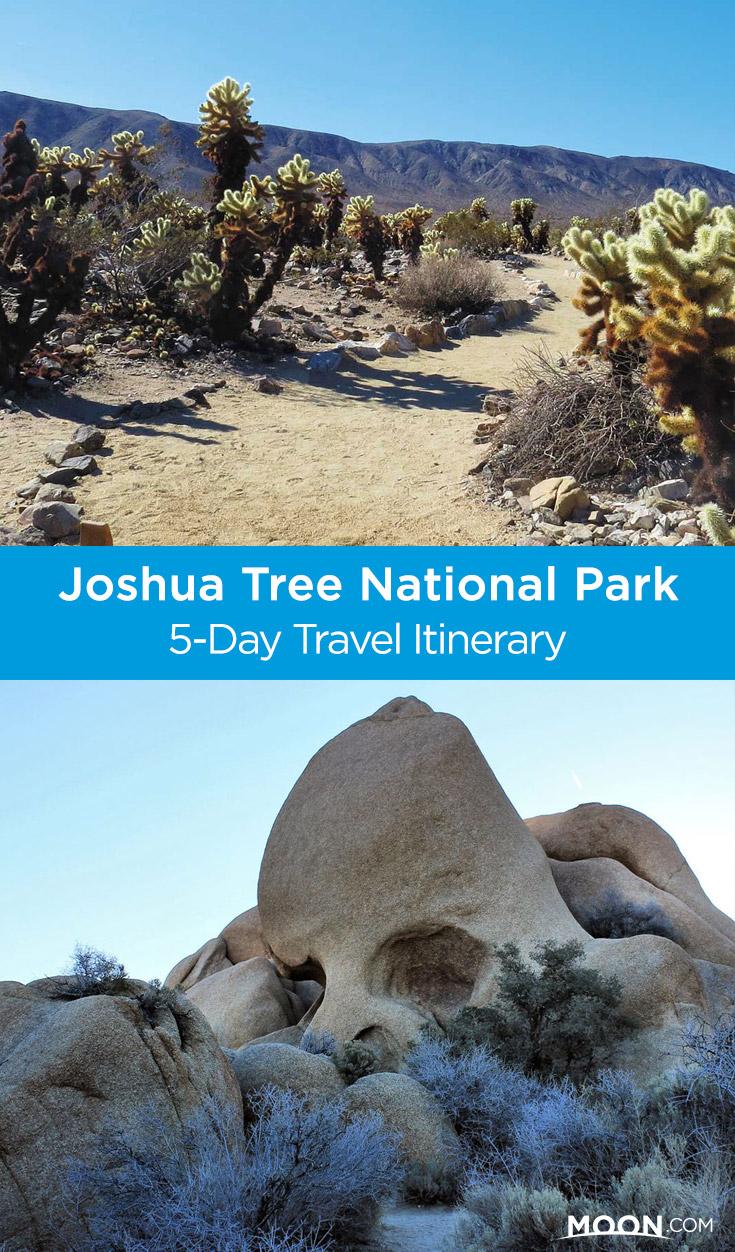 joshua tree itinerary pinterest graphic