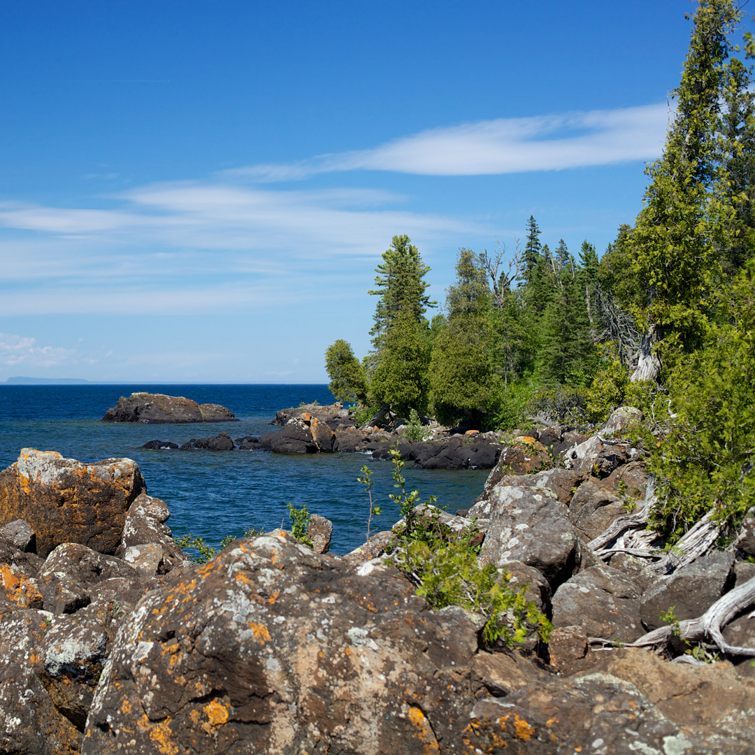 trees on a rocky coastline in Isle Royale National Park
