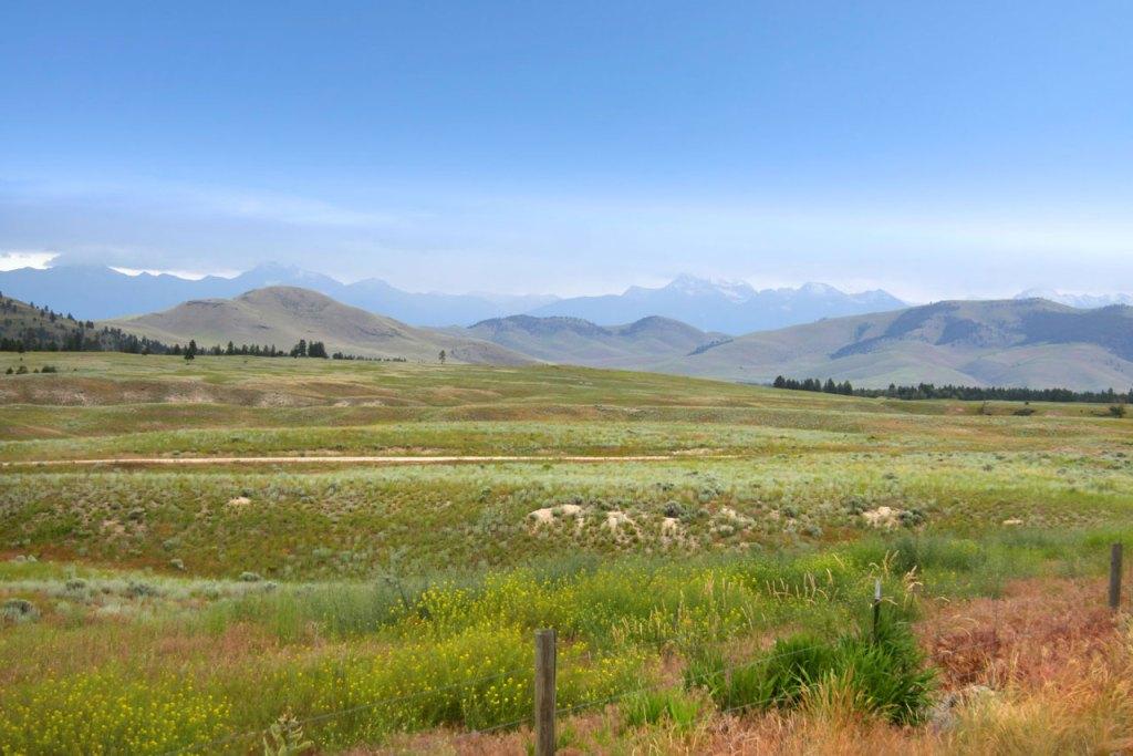 pastures in montana