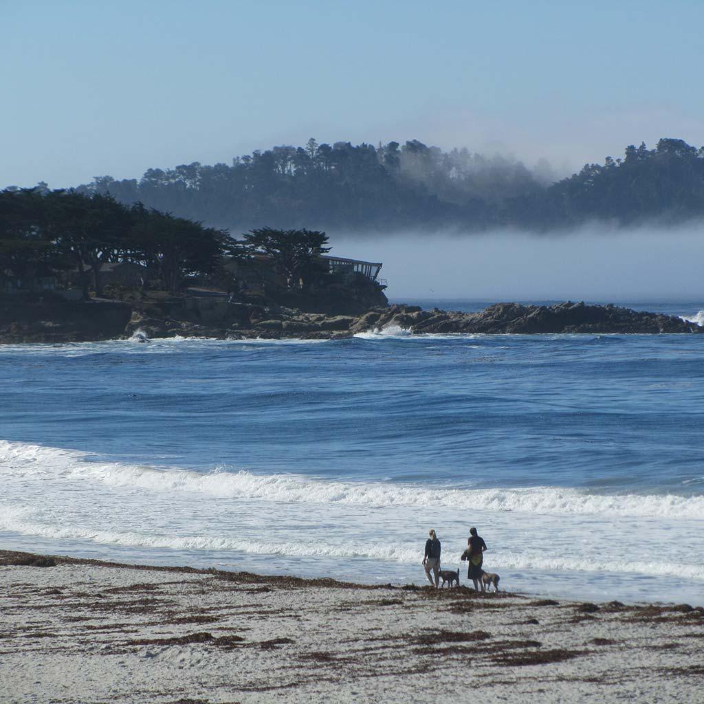 Shot of the beach, where two people and their dogs stroll next to the shoreline. Fog and hills in the background a bit across the water.
