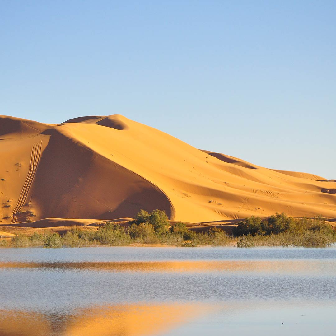 The seasonal lake of Erg Chabbi is surrounded by sand in the Sahara Desert, Morocco.