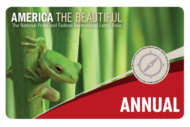 america the bueatiful national parks pass with a frog on it
