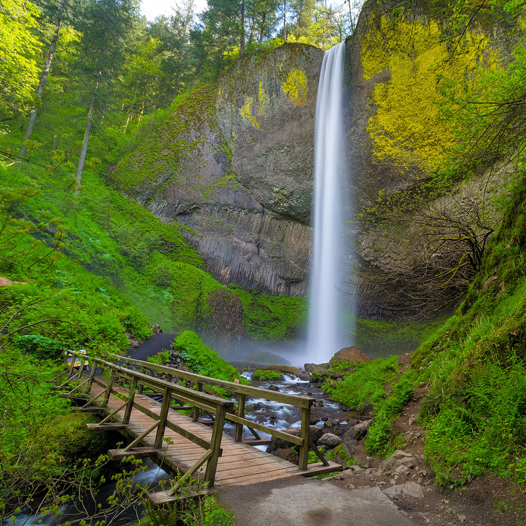 a wooden walkway leads to a waterfall in the Columbia River Gorge
