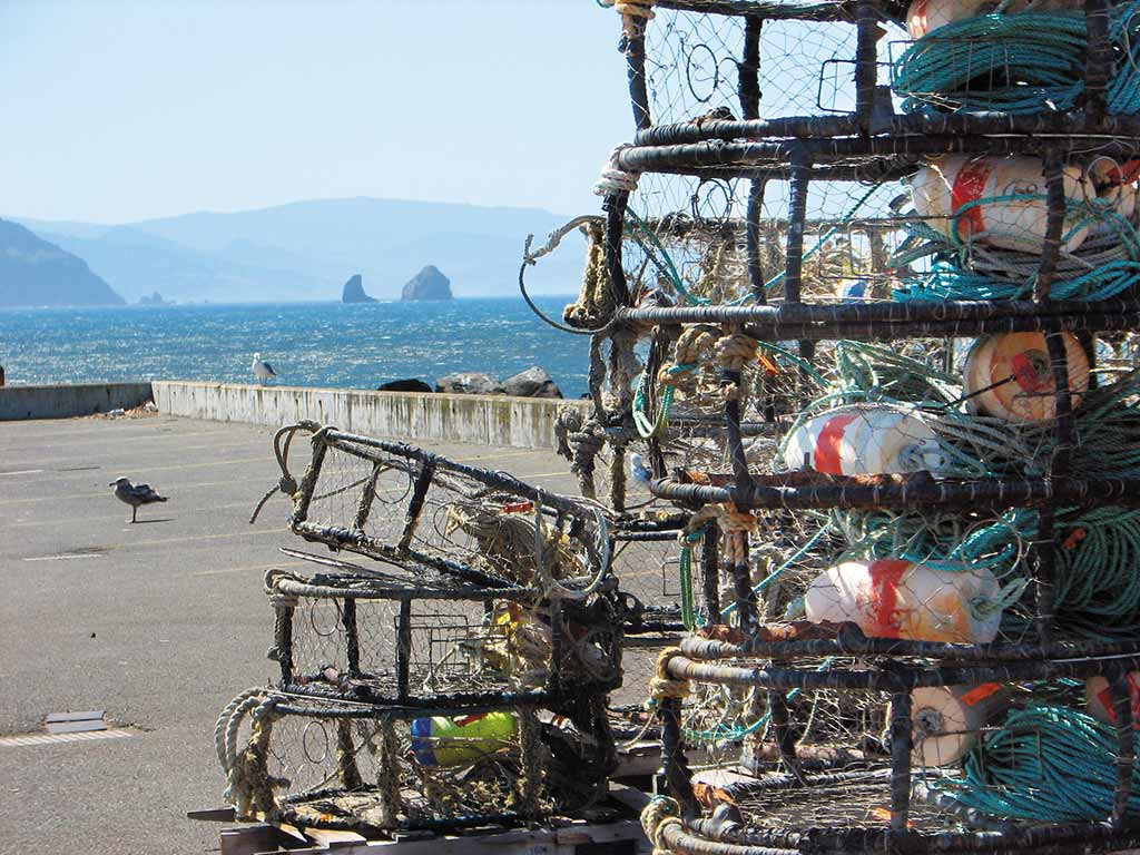 Rent some crab traps and catch your own dinner in Bandon. Photo © Judy Jewell.