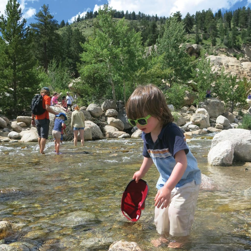 young child wading in shallow water in a national park