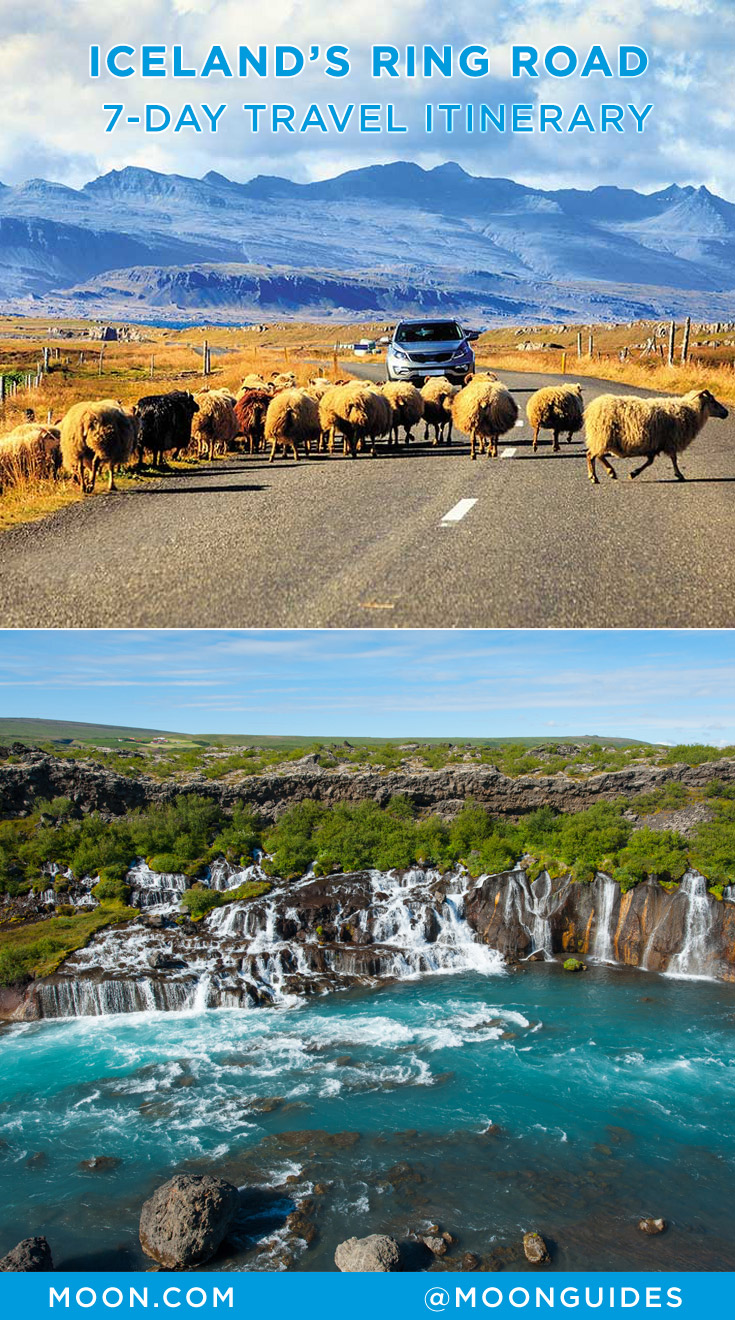 Iceland Ring Road Itinerary graphic with photo of a car blocked by sheep and a photo of Hraunfossar