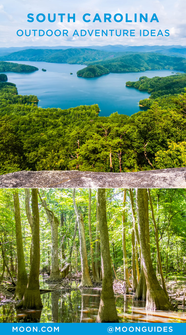 Pinterest graphic with a photo of Lake Jocassee and a cypress forest in South Carolina