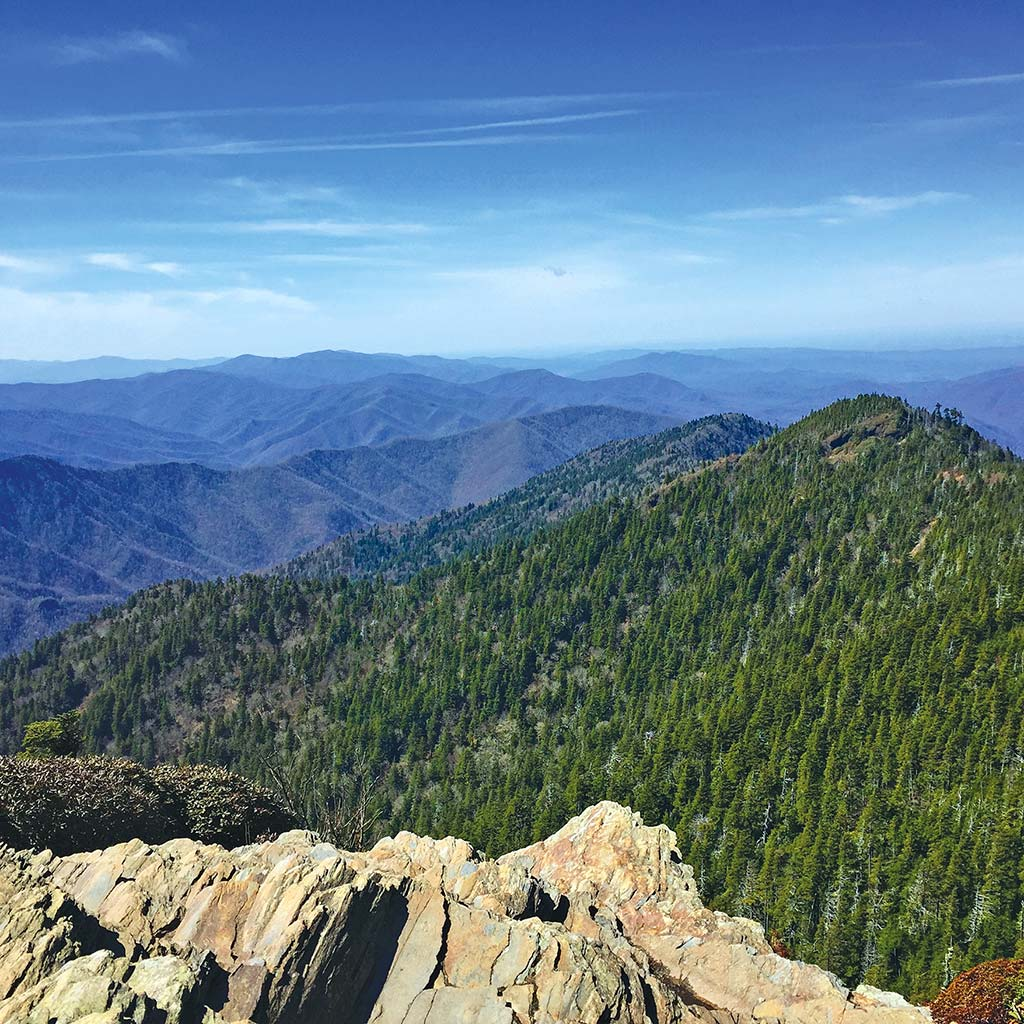 Epic vista of forested hills from atop Mount Le Conte.