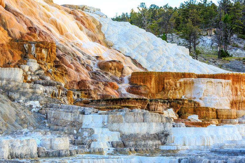 Terraced rock at Mammoth Hot Springs in Yellowstone.