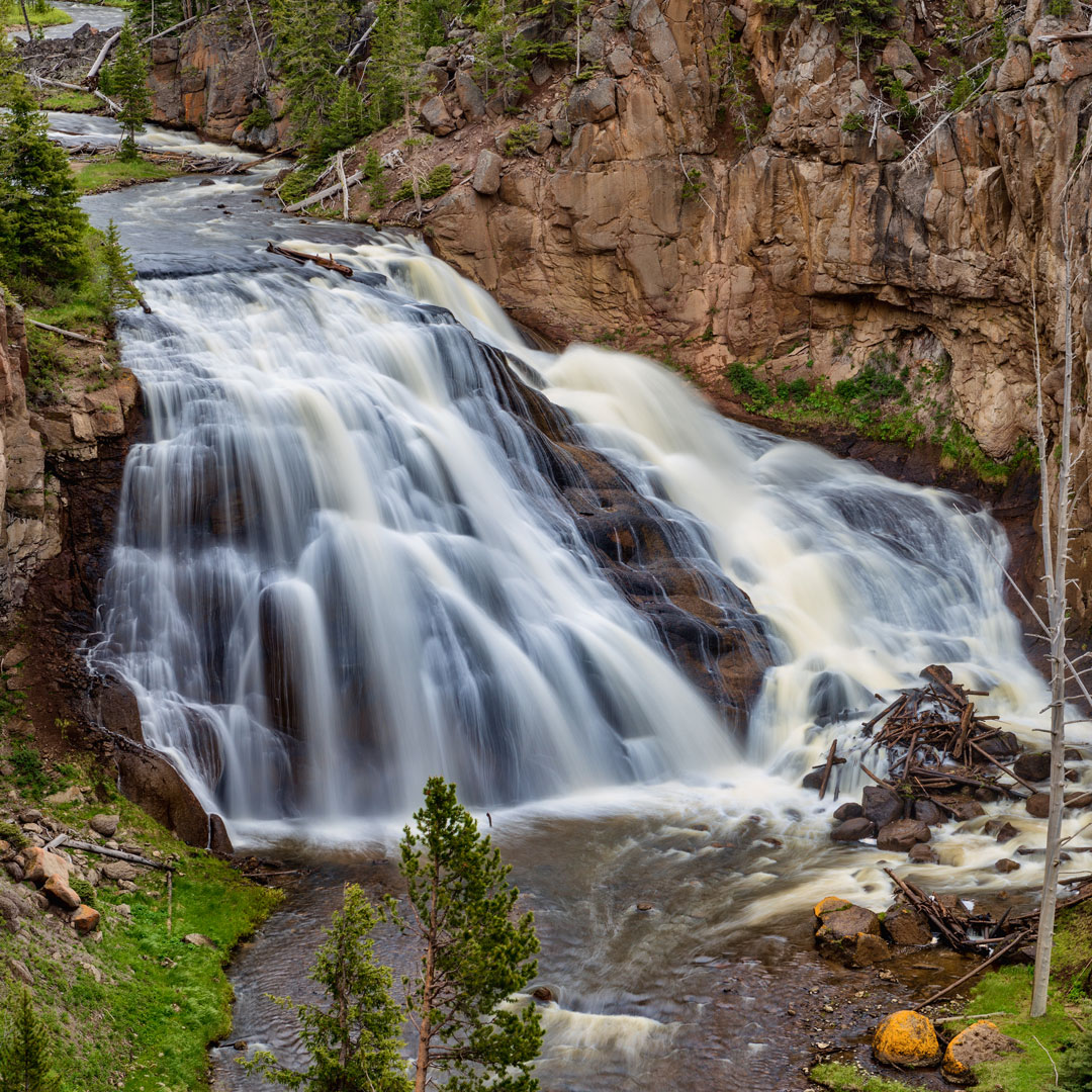 waterfall surrounded by rock and trees in yellowstone