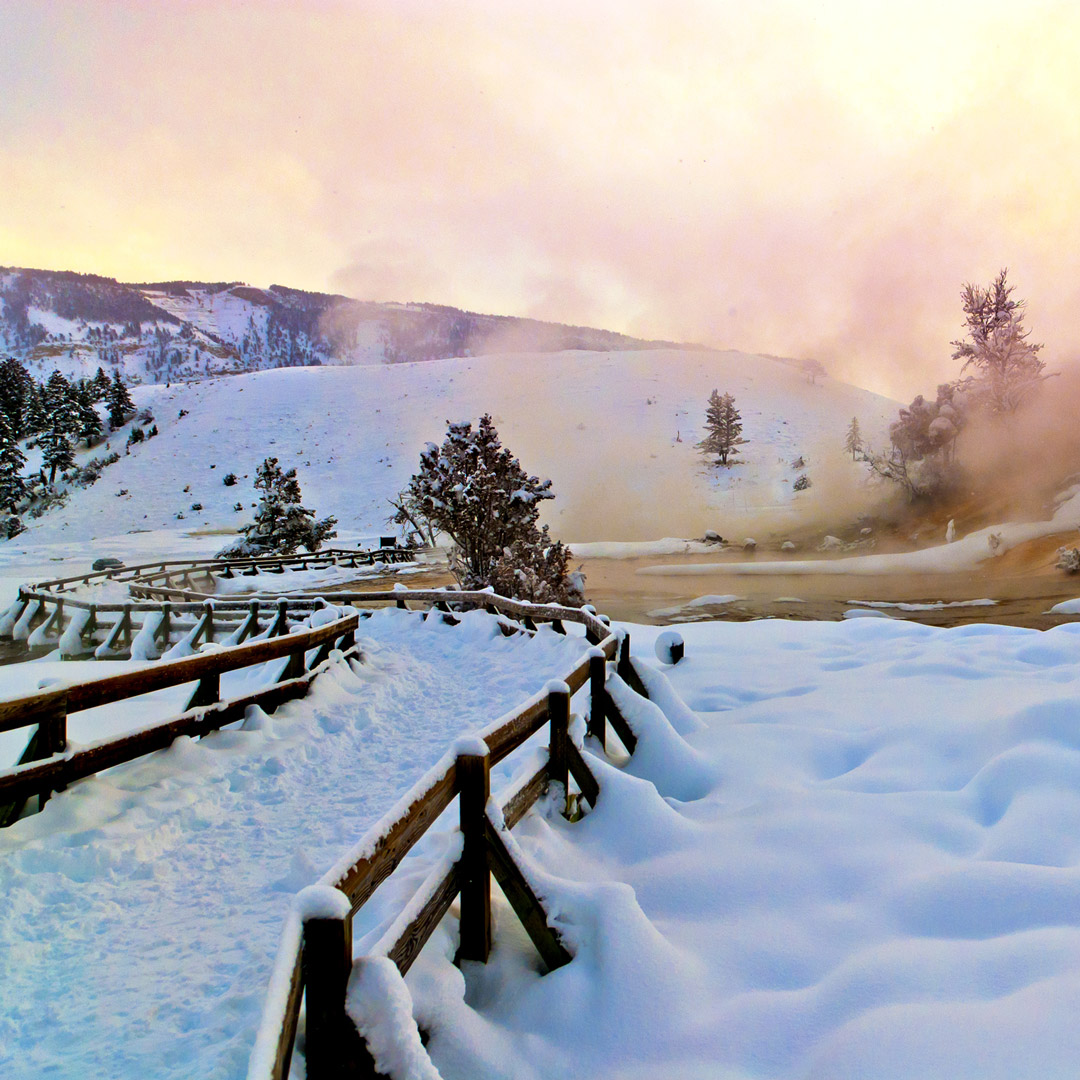 snowy path leading to Mammoth Hot Springs in Yellowstone