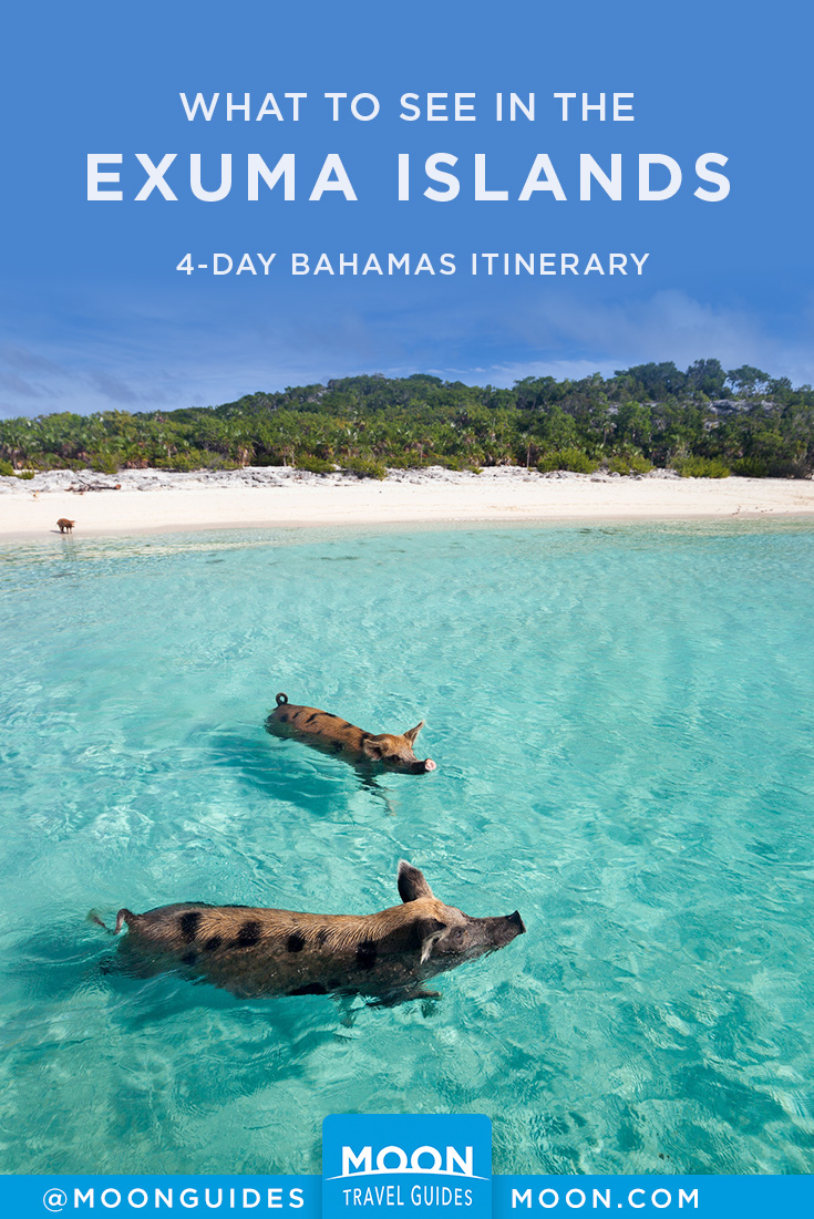 Exuma Islands Travel Itinerary Pinterest graphic featuring swimming pigs