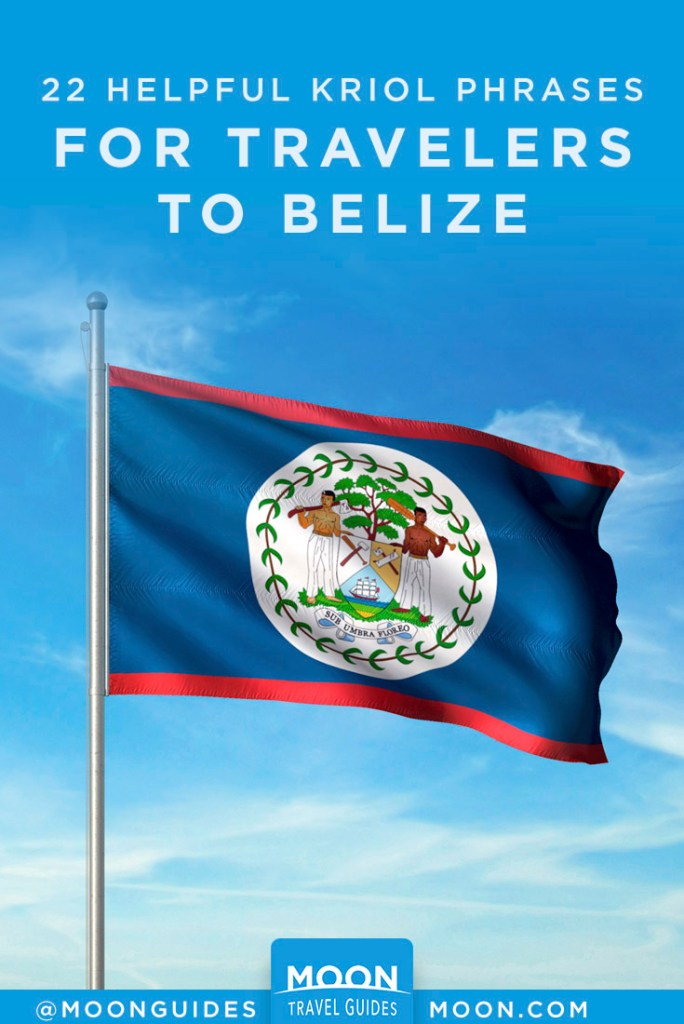 Belize flag waving on a flagpole. Pinterest graphic.