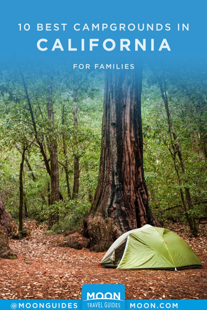 Green tent at the base of a redwood tree. Pinterest Graphic.