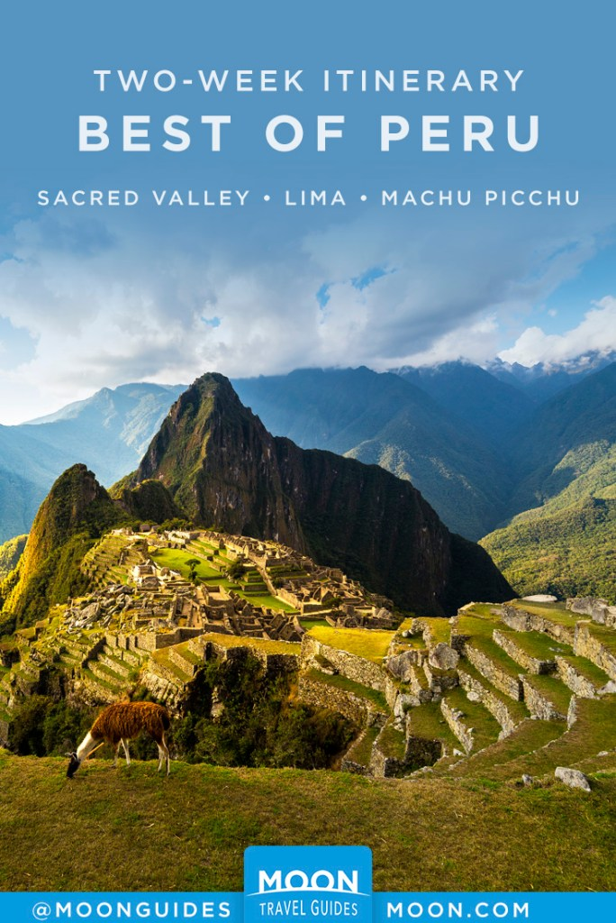 Llama grazing in front of Machu Picchu ruins. Pinterest graphic.