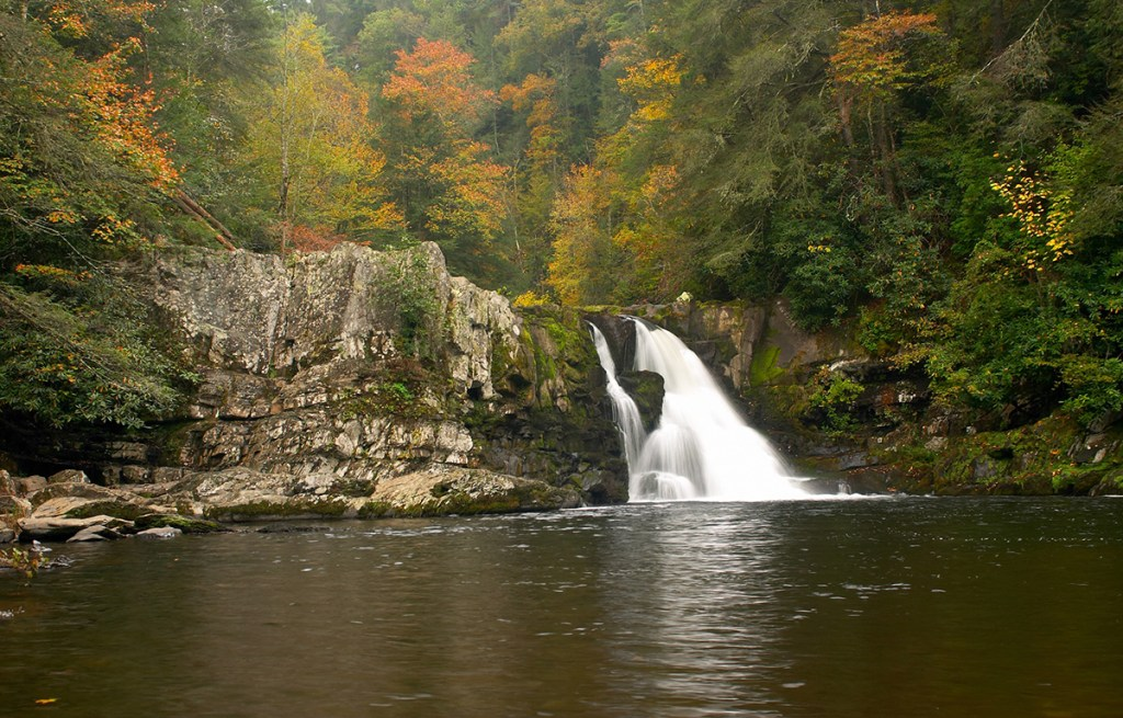 a waterfall gushing into a stream in autumn