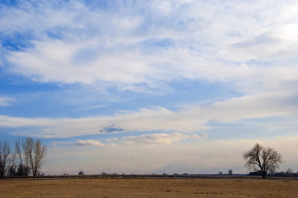 Colorado prairie