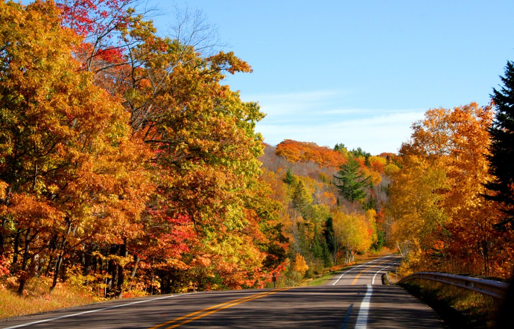 fall foliage lining the highway in Michigan