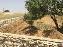 tepekoy mezarlik calismasi (3)