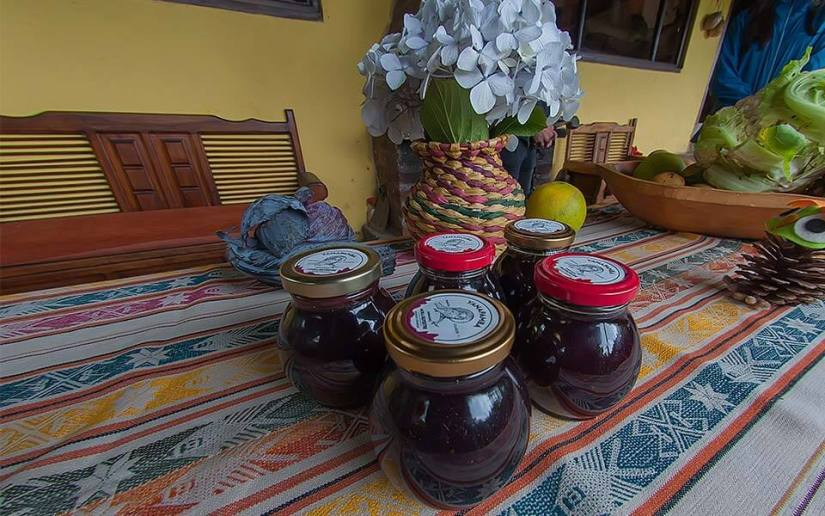 yanapamba-tour-hacienda-pinsaqui-otavalo-ecuador
