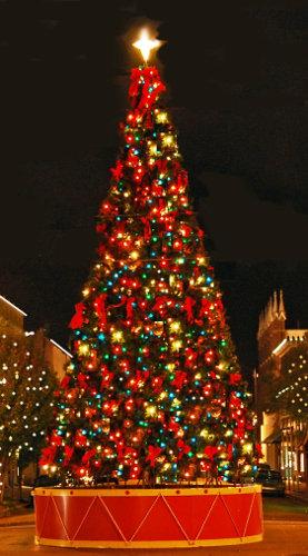 Downtown Bend Christmas Tree