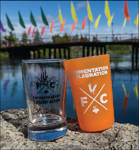 Fermentation Celebration 2016 cups