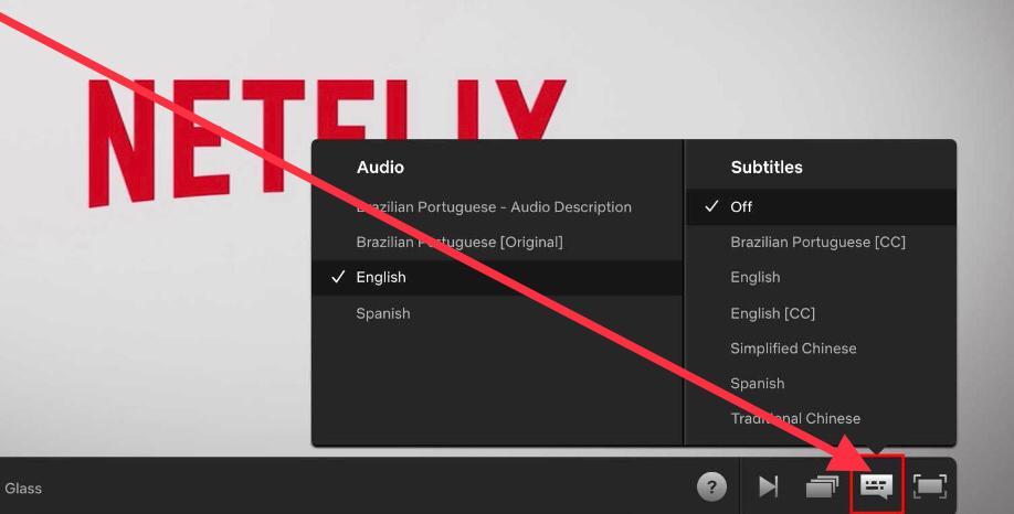Change Audio Settings on Netflix