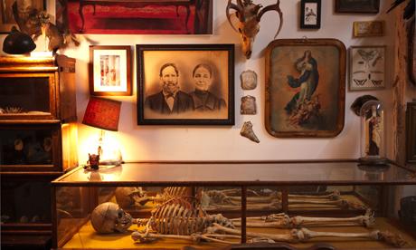 Morbid Anatomy Library, Brooklyn