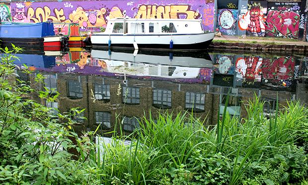 Thames21's latest reedbed design