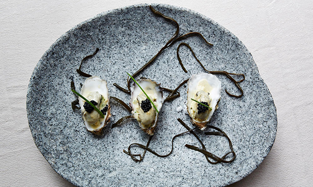 Oyster dish at Chriskitch