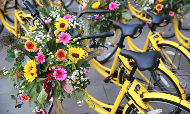 Flowered up: Ofo bikes will be on hand at Tour De Plants, for the wheel-less