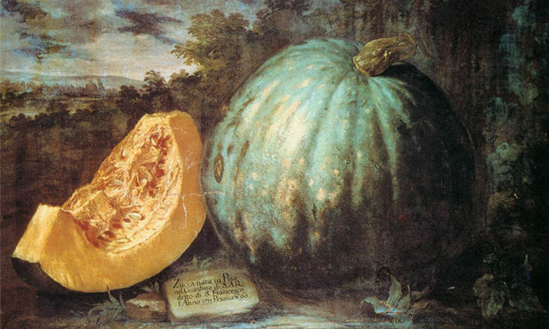 Bartolomeo Bimbi's The Pumpkin (c. 1650). Image: Wikimedia Commons