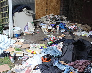 Trashed: how the back of the old park keeper's lodge looks at present. Photograph: Andrew Barnes