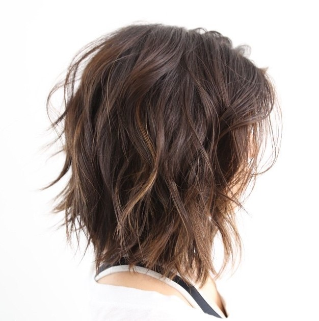 Shoulder Length Thick Hair Short Layered Haircuts 60