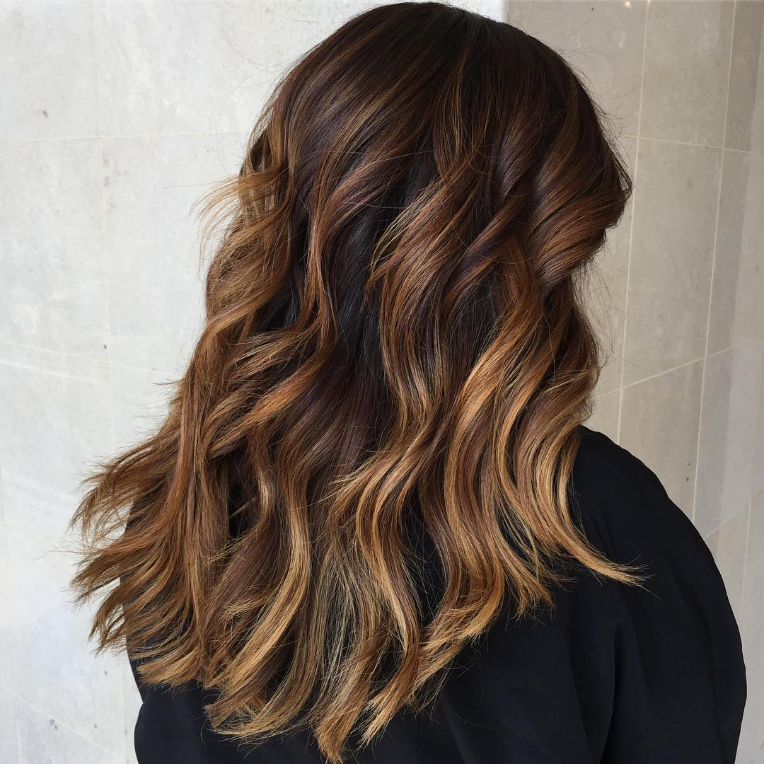 Long Thick Brown Hair with Warm Balayage