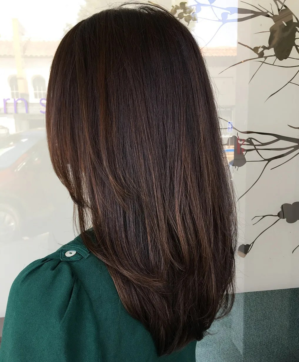 Straight Dark Brown Highlighted Hairstyle