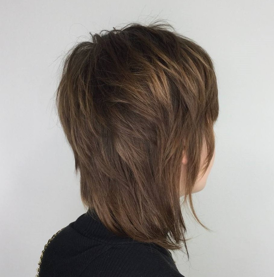 Mid-Length Shag Haircut