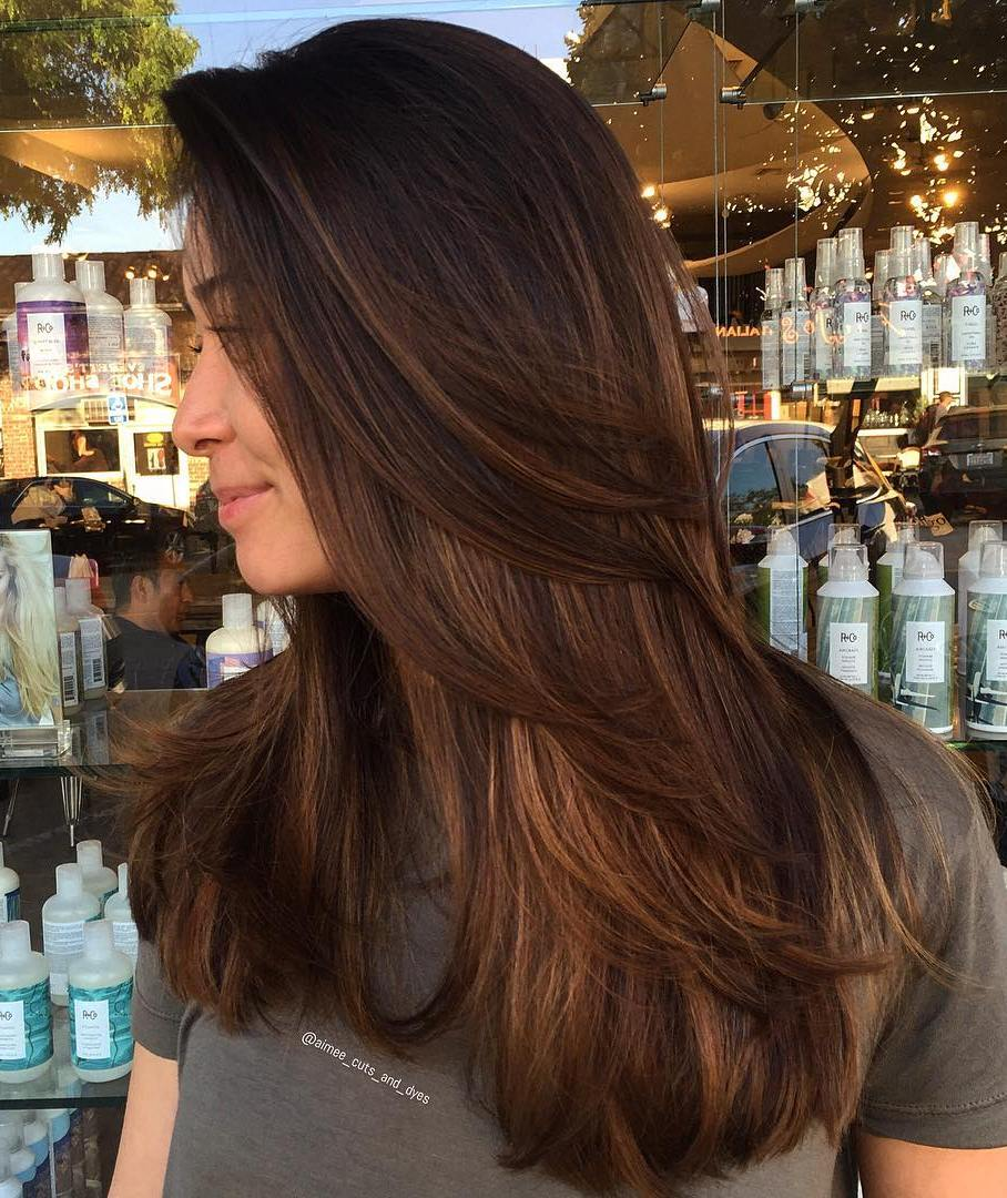 Chocolate and Chestnut Balayage for Thick Hair