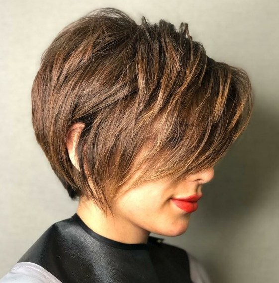 Pixie Bob with Layered Bangs