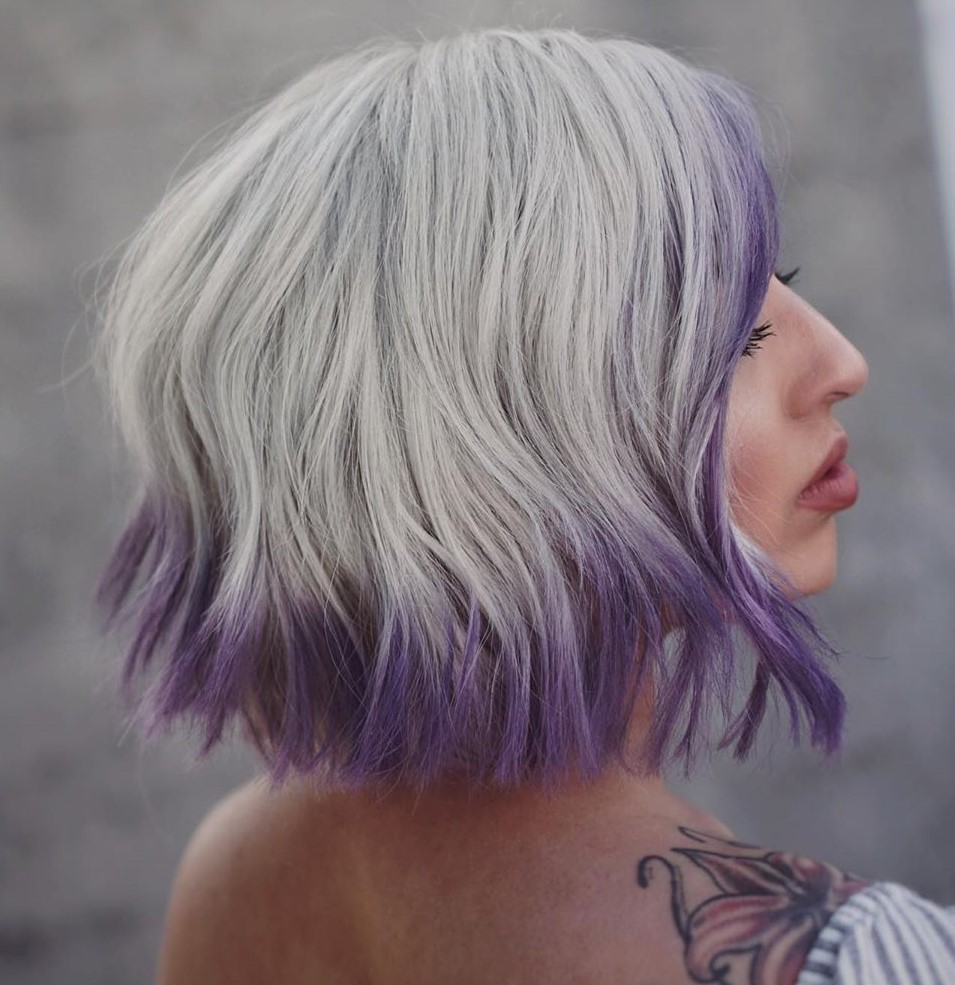 Gray Bob with Purple Framing