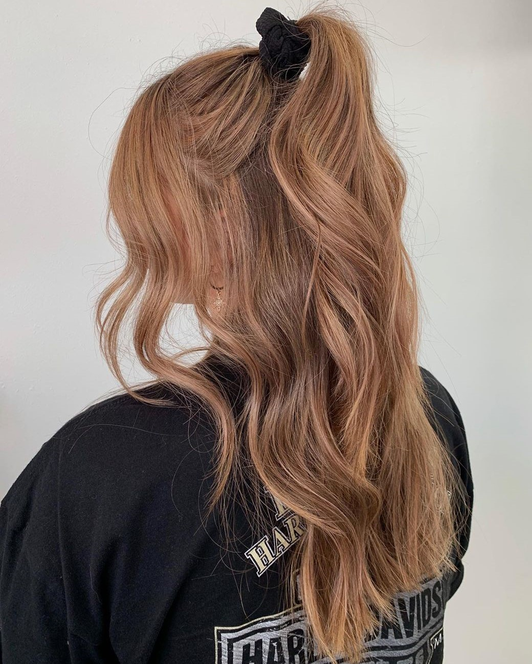 Fancy Half Up Ponytail Hairstyle