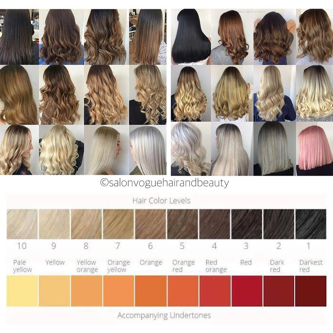 Hair Color Levels and Undertones
