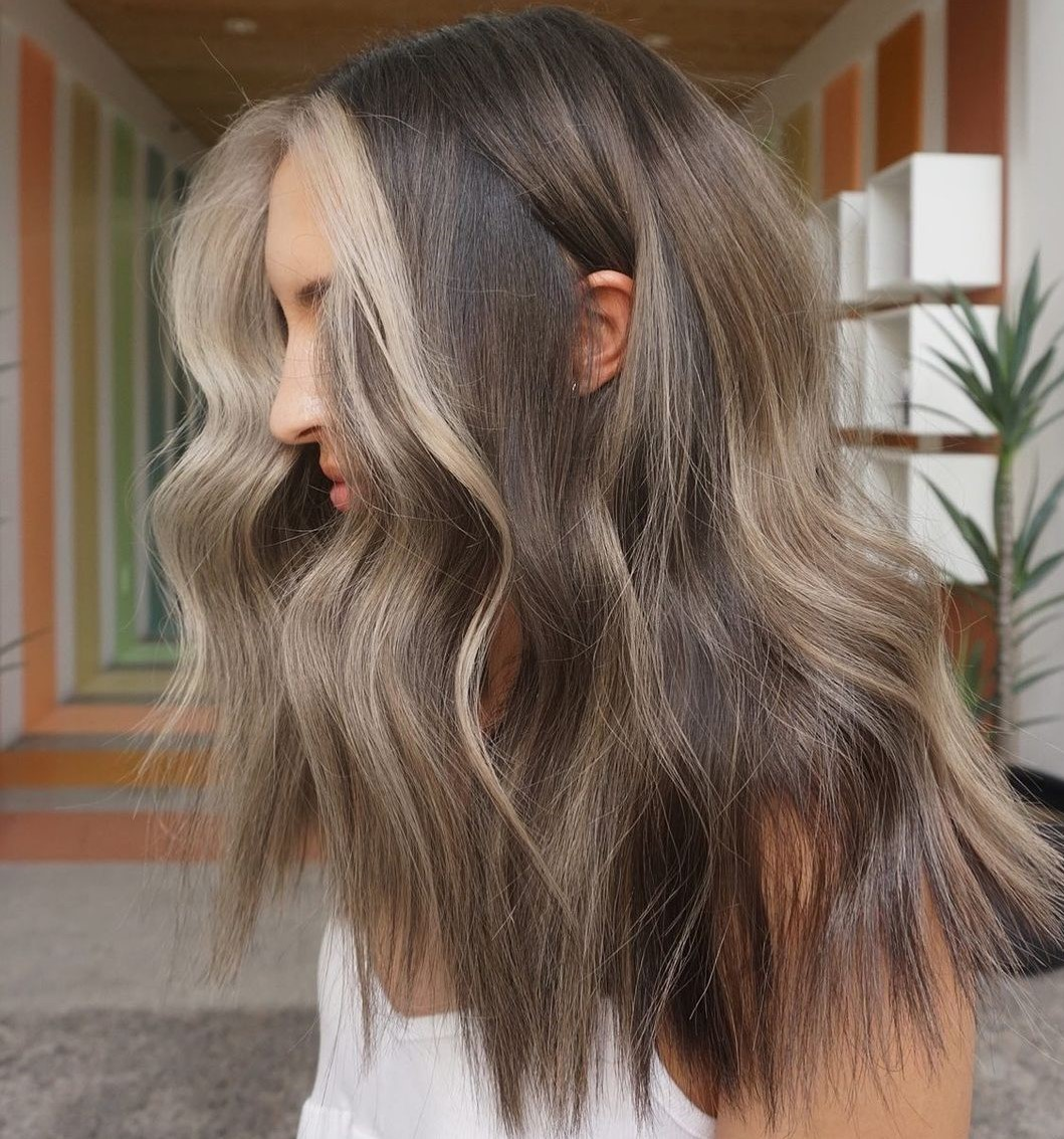 Mushroom Brown Hair with Money Pieces