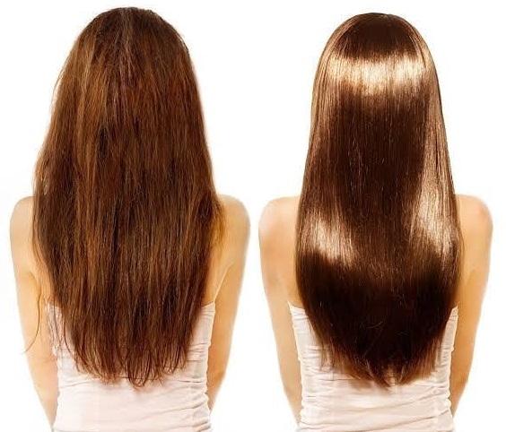 What Is the Best Oil for Shiny Hair