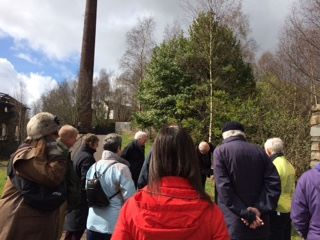 Guided Walks 2017