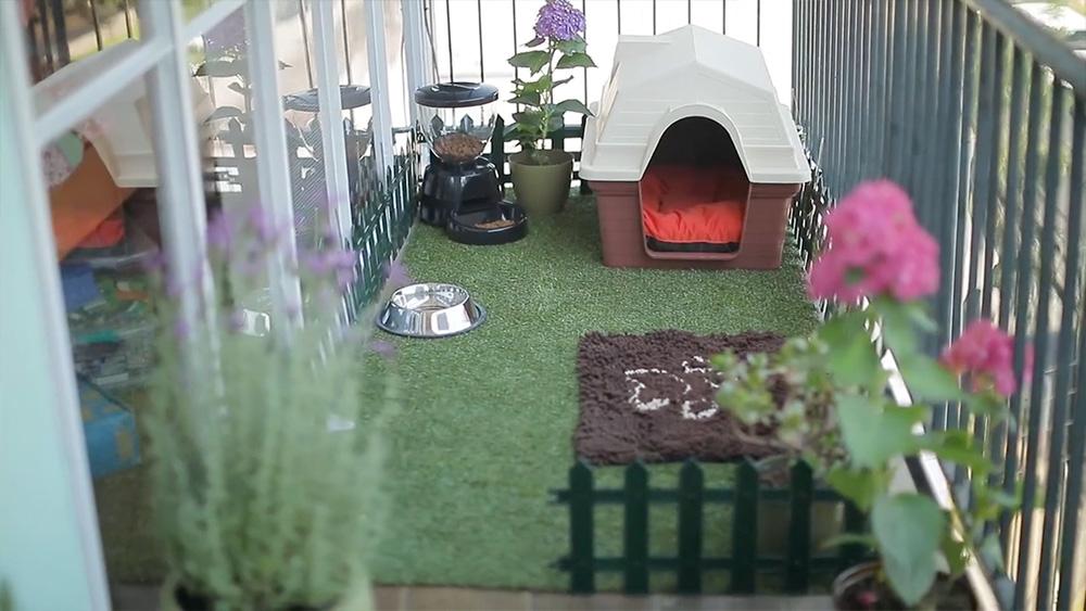 Hgalo Usted Mismo  Cmo hacer un patio para tu perro en
