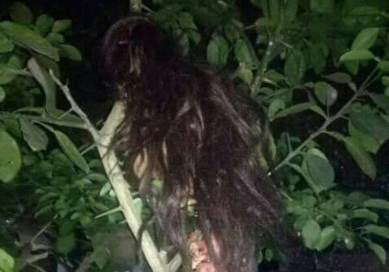 Heboh penemuan hantu kuyang di Kalimantan, ternyata ini fakta sebenarnya