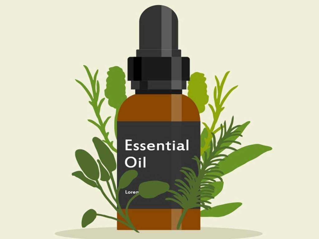 Plant essential oil